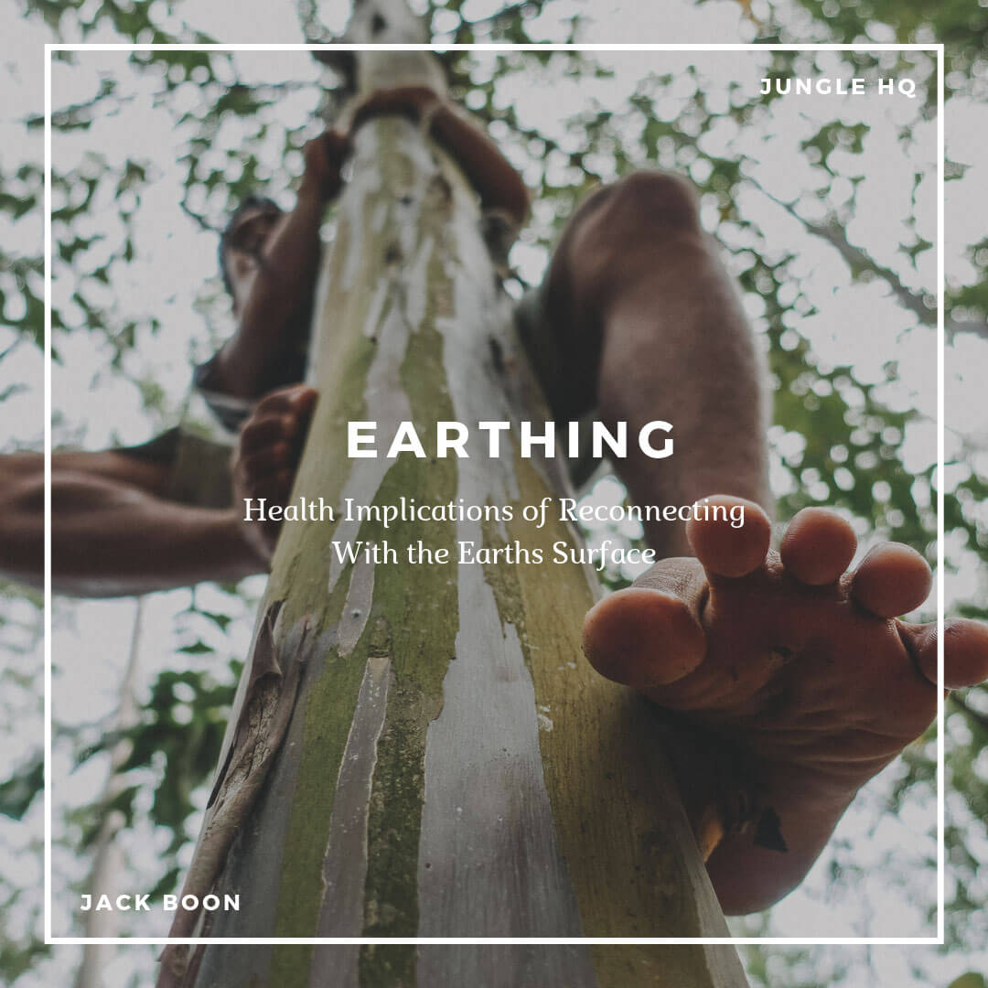 Earthing - Jungle HQ